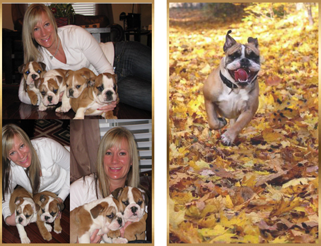 home_autumnbulldogs_pic1